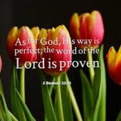 Power of Gods Word